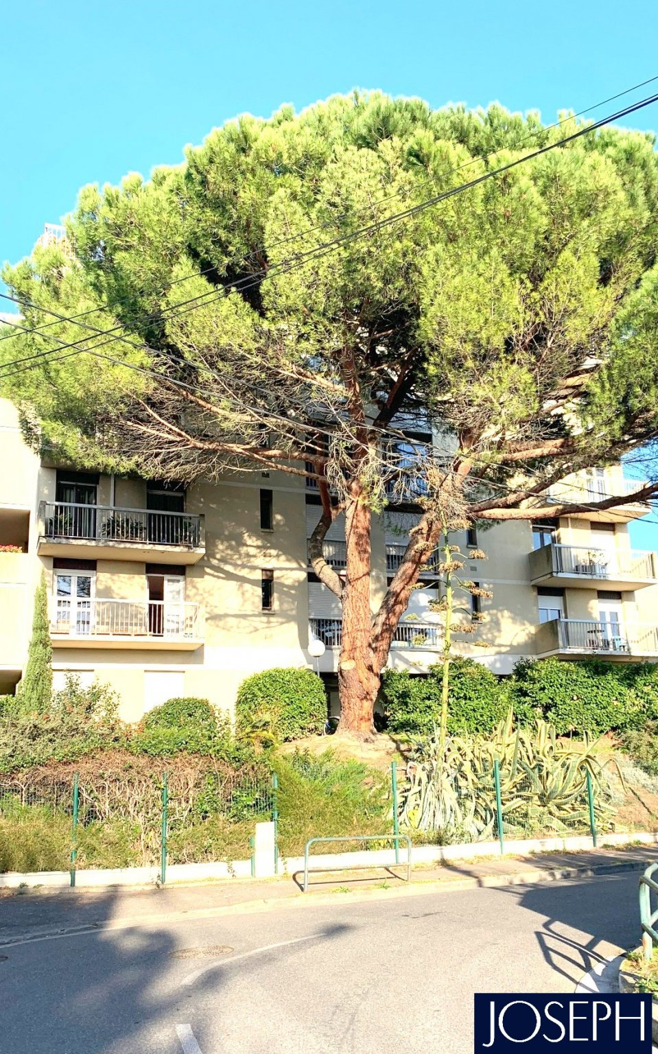 toulouse Vente appartement